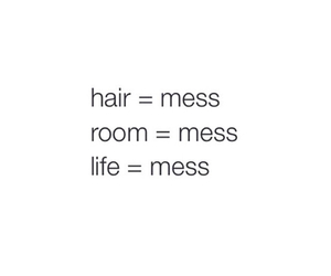 mess, life, and quote image