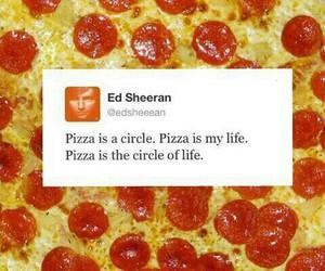 food, circle of life, and funny image