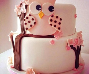 cake, owl, and pink image