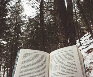 book, forest, and snow image