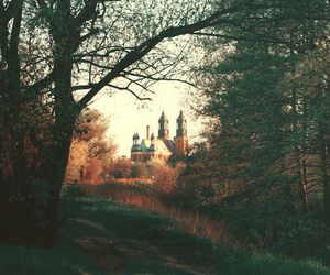 castle, forest, and tree image