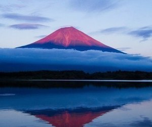 nature, japan, and travel image