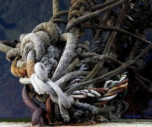 gordian knot and shjora image