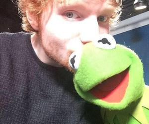 ed sheeran and ed image