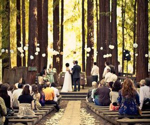 wedding, forest, and couple image