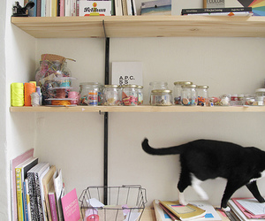 cat, decor, and kitty image