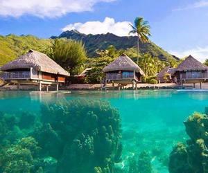 french polynesia and mo'orea island image