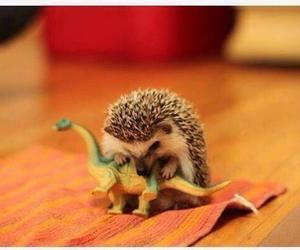 dinosaurs, hedgehog, and fucking cute image