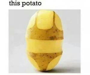 potato, bikini, and funny image
