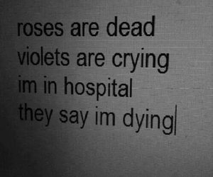 sad, dead, and quotes image