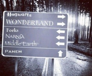 narnia, wonderland, and hogwarts image