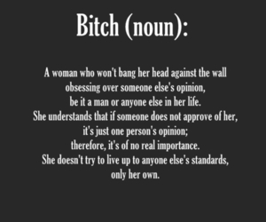 bitch, quote, and words image