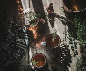 tea, nature, and plants image