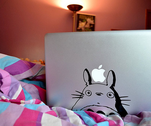 apple, totoro, and photography image
