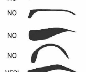 eyebrows, yes, and no image
