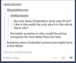 cinderella, funny, and tumblr image