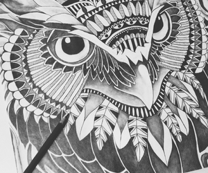 drawing, black and white, and owl image