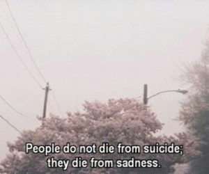 sadness, suicide, and sad image