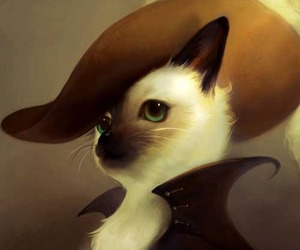beauty, cat, and hat image
