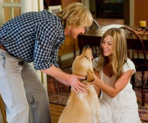 dog, marley and me, and film image