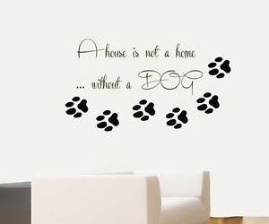 paw prints, dog quotes, and home interior design image