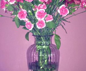 flowers, natural, and room image