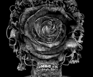 black and white, dark, and flowers image