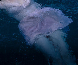 pale, water, and dress image