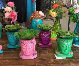 plants, Buddha, and indie image