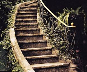 stairs, garden, and nature image