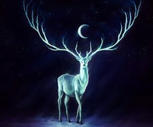 moon, deer, and night image