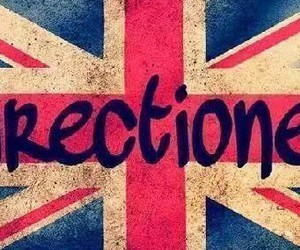 directioner, harrystyles, and louistomlinson image
