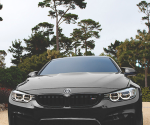 car, black, and bmw image