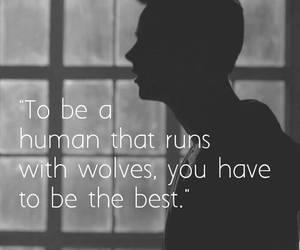teen wolf, stiles stilinski, and wolf image