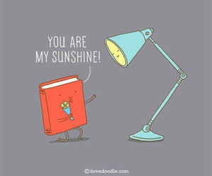 sunshine, book, and light image