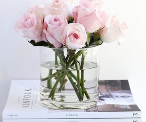roses and flower pink image