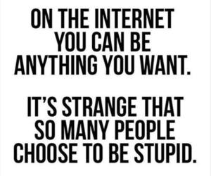 internet, quotes, and stupid image