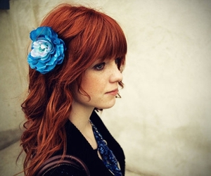 blue, flower, and redhead image