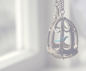 bird, cage, and necklace image