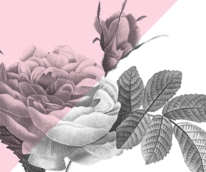 background, pink, and sketch image