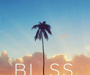 bliss and summer image