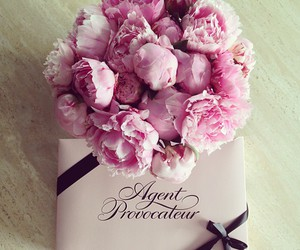 flowers, pink, and agent provocateur image