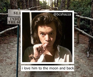 icon and Harry Styles image
