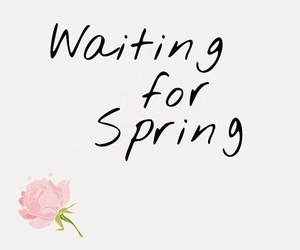 spring, waiting, and love image