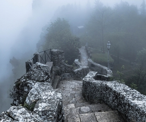 fog, trail, and trees image