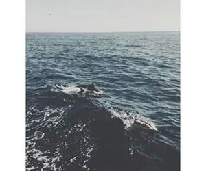sea, waves, and march image