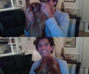 boys, dog, and happy image