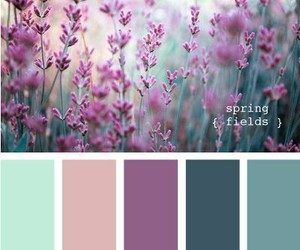 mint, purple, and spring image
