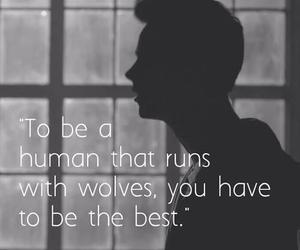teen wolf, stiles stilinski, and wolf image