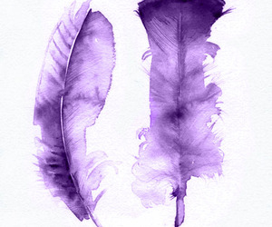 feathers, painting, and purple image